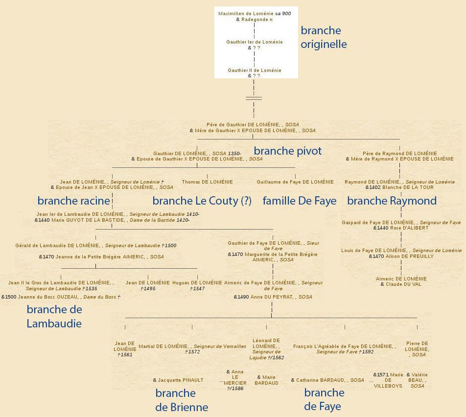 Origine du nom de famille TORT (Oeuvres courtes) (French Edition)